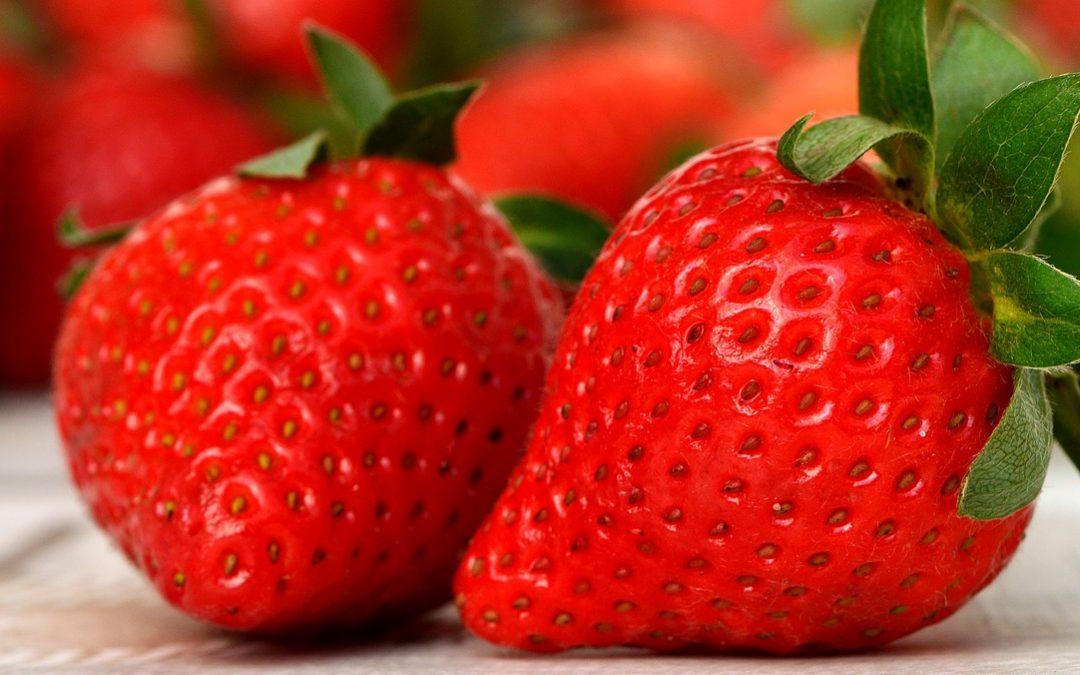 La recette du Sorbet à la fraise et à l'huile essentielle de basilic